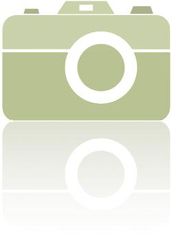 Bild-logga